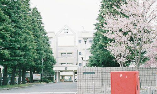 桜と桜丘高校