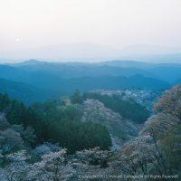 吉野山の夕暮れ
