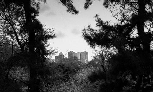 戸山公園箱根山